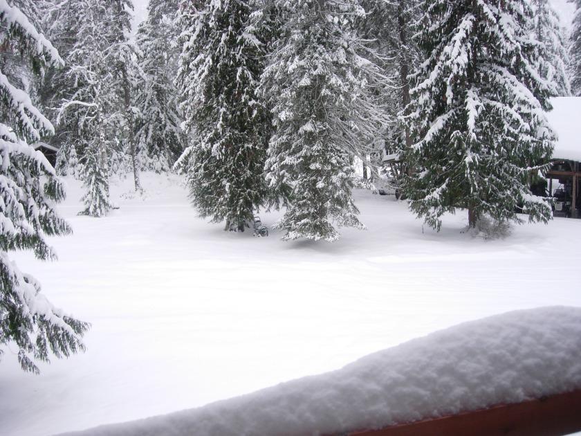 winter-2017